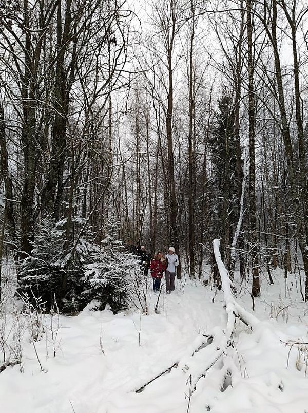На фото: участники похода идут друг за другом по тропинке в зимнем лесу